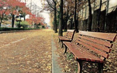 Parque para dos